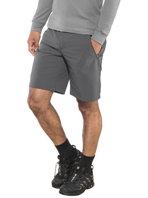 Regatta Xert II Stretch Shorts Men seal grey